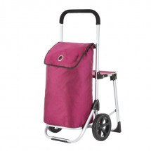 Shopping trolley with Relax Premium 604351 seat (2915)